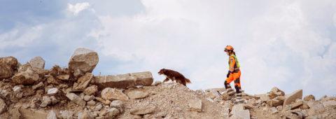 Enota reševalnih psov